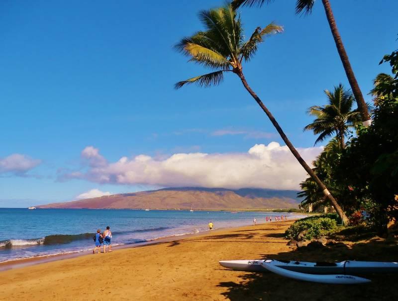 sugar beach on maui