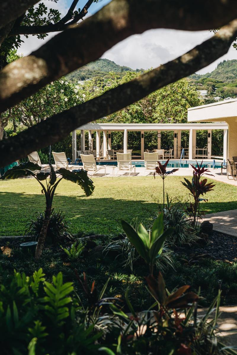 view of pool and tropical landscaping in honolulu oahu