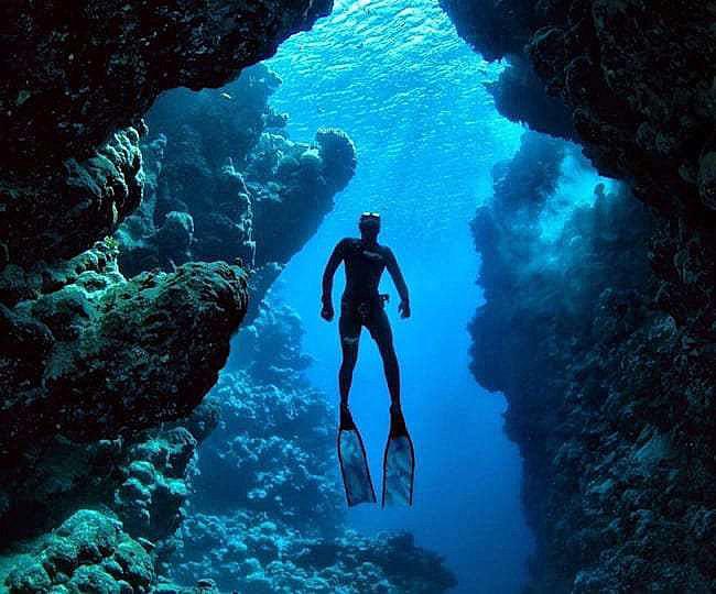 diving in the ocean big island