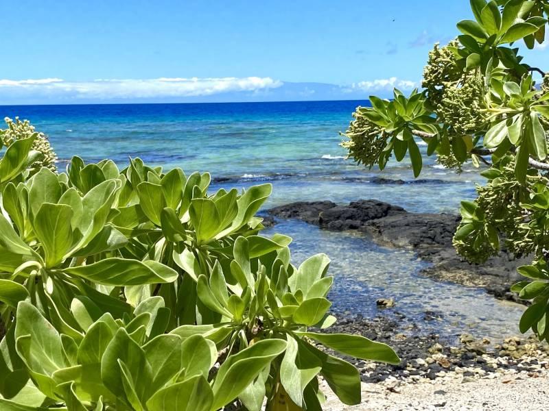 beachfront big island hawaii