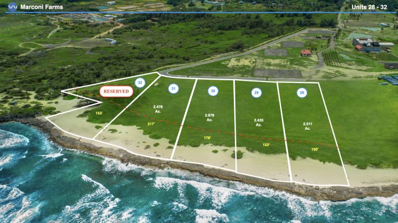 marconi farms oceanfront ag land for sale oahu